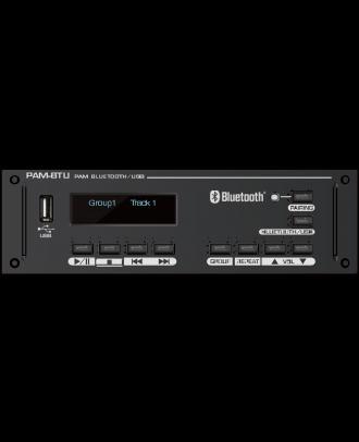 Module bluetooth/USB pour pam-3xx Majorcom PAM-BTU