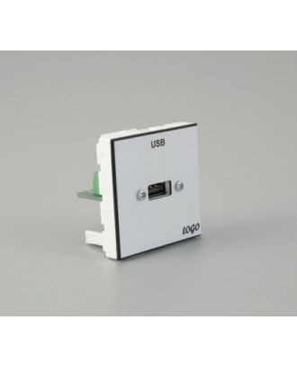 Plastron 45 + embase USB A F raccordée sur bornier à vis